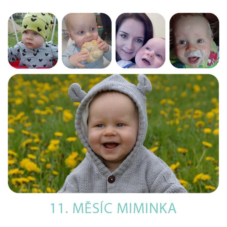 Deník miminka za 11. měsíc
