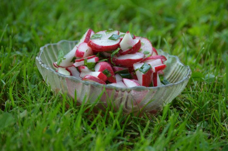 Svěží ředkvičkový salát