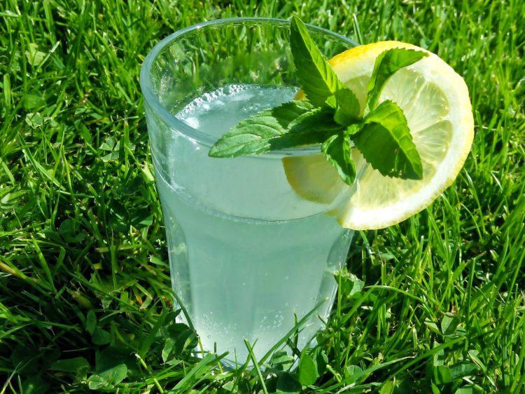 Citronová limonáda podle Zdeňka Pohlreicha