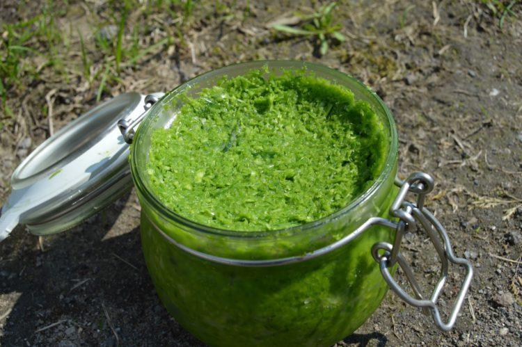 Pasta ze zelených česnekových výhonků
