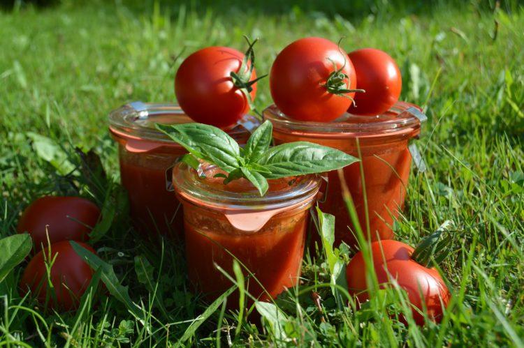 Domácí rajčatové pyré